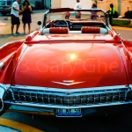 MelroseParkCruiseNight-_DSC1169.jpg